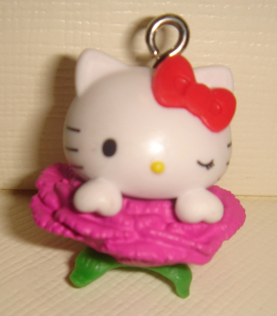 foto - HELLO KITTY ROSA